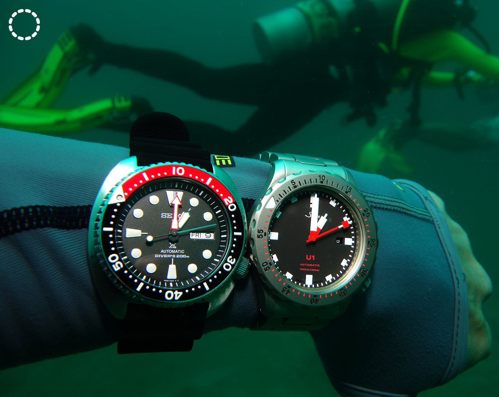 JM dive review 4