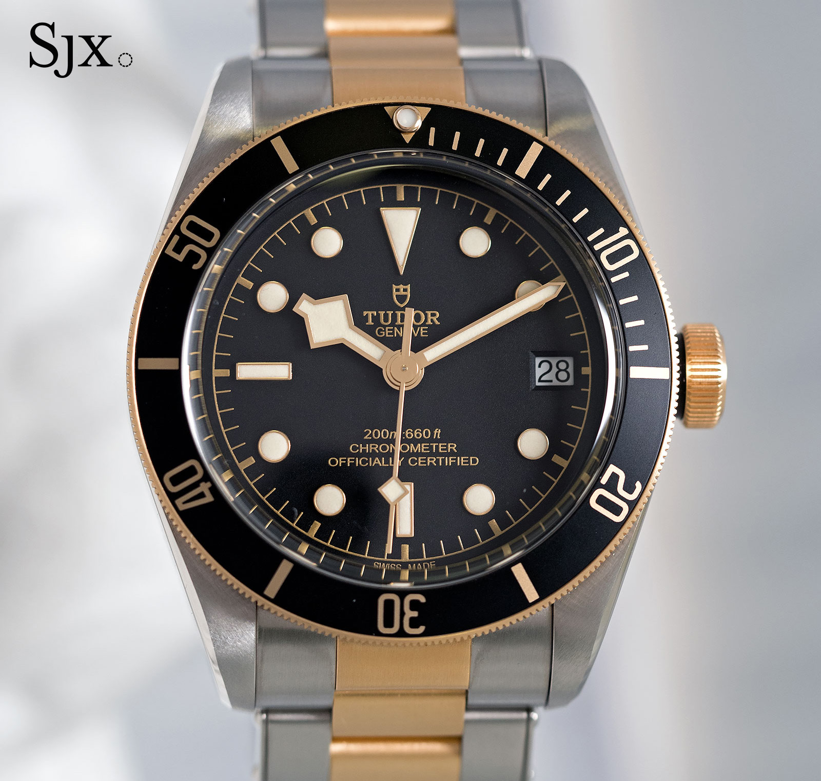 Tudor Black Bay S&G 79733N-1
