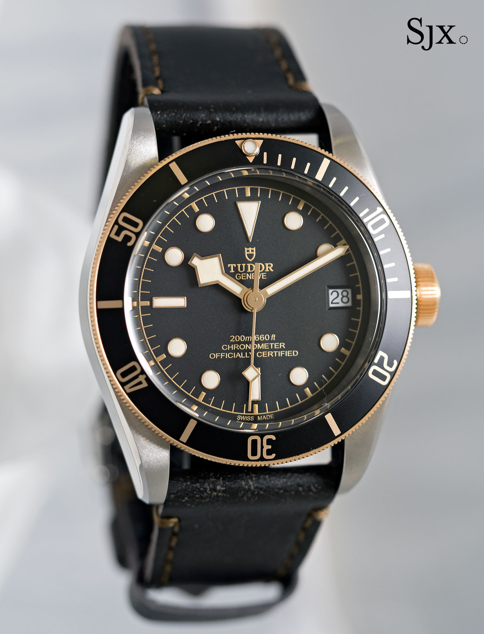 Tudor Black Bay S&G 79733N-10