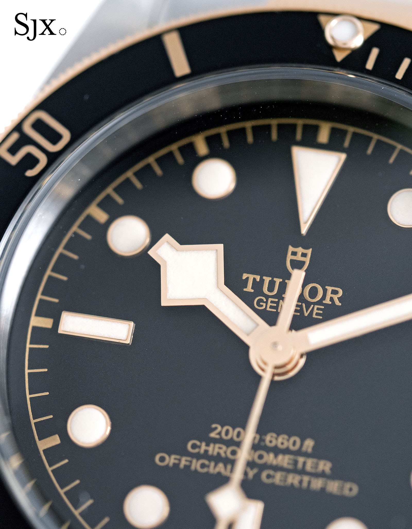 Tudor Black Bay S&G 79733N-4