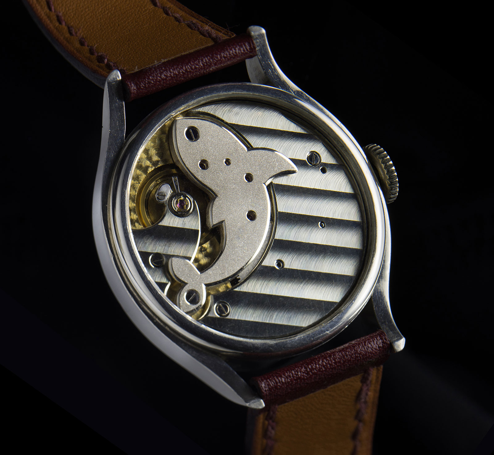 Logan Kuan Rao Orca watch 4