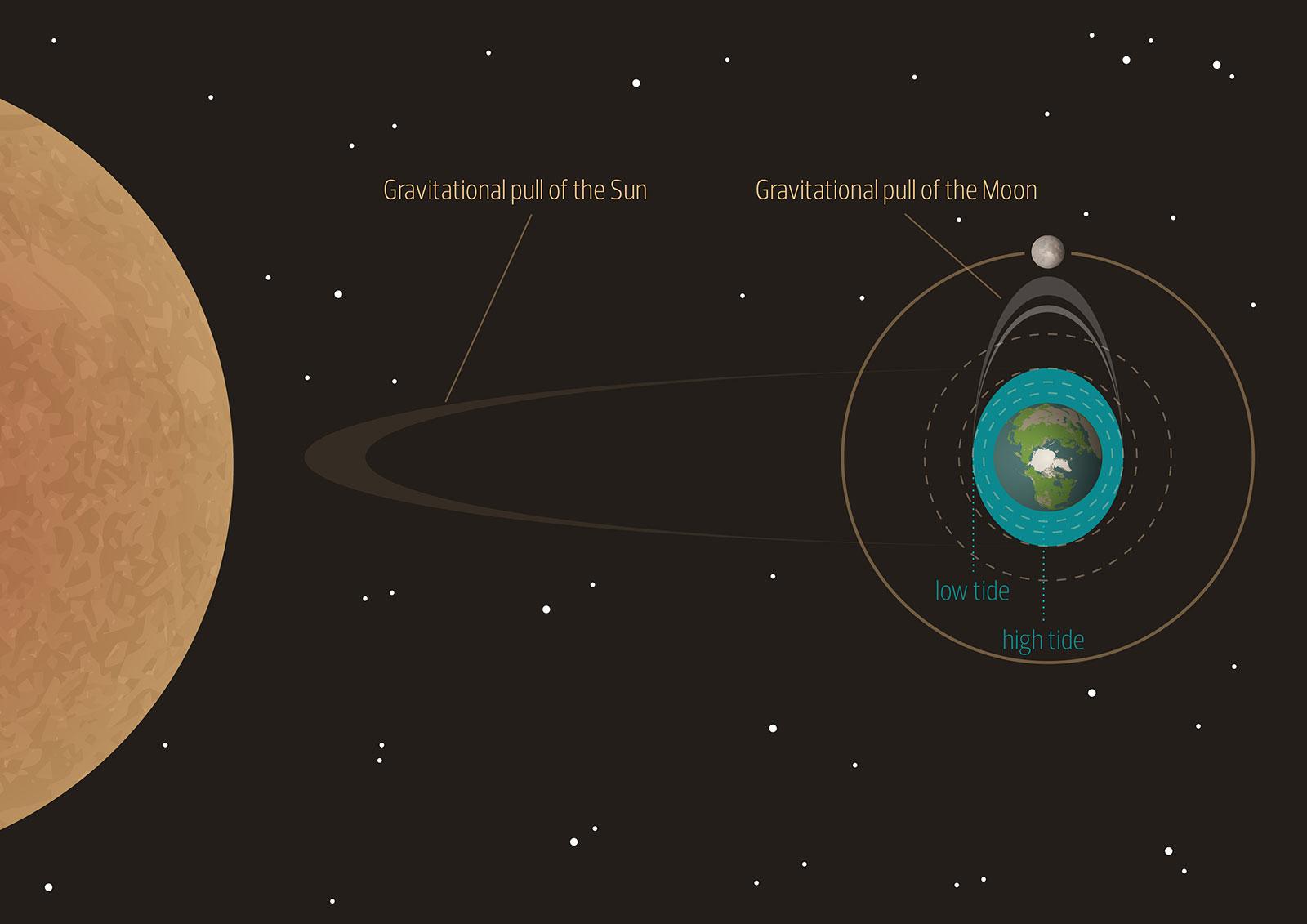 Vacheron Constantin Celestia diagram 2