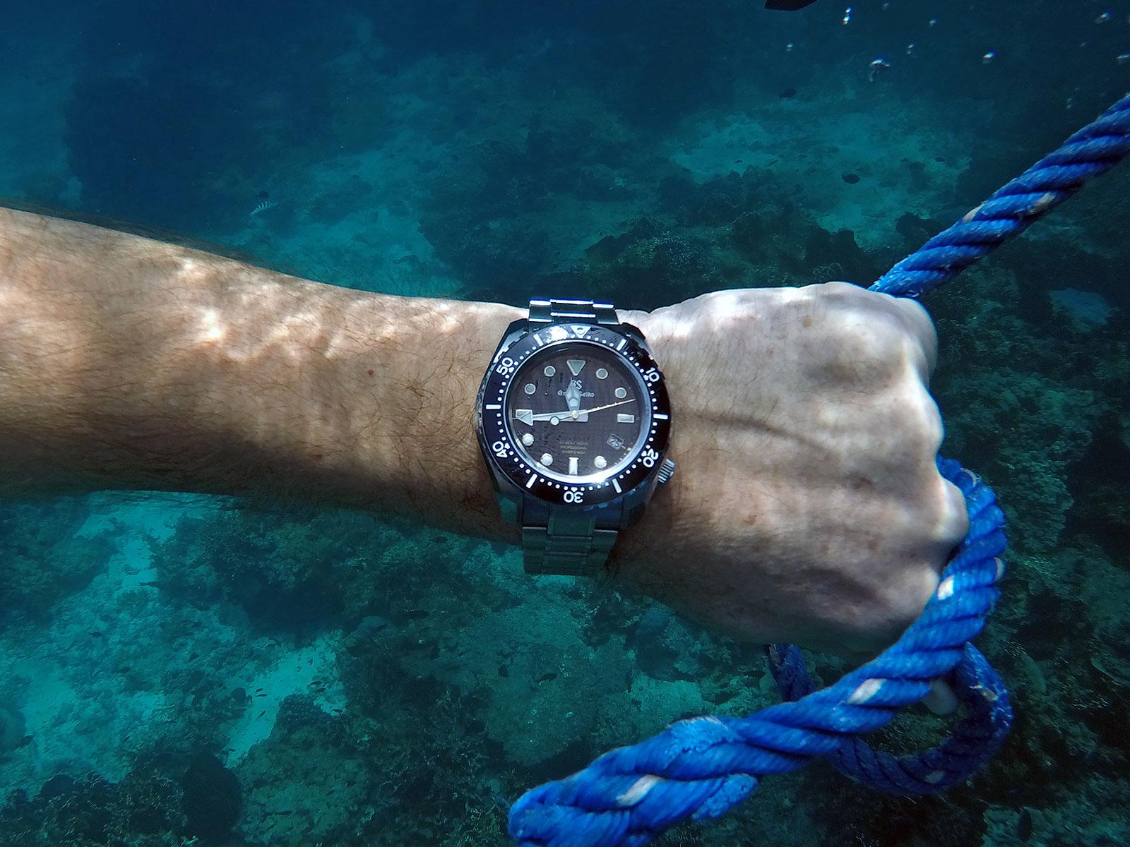 Grand Seiko Hi-Beat Diver SBGH255G review 2