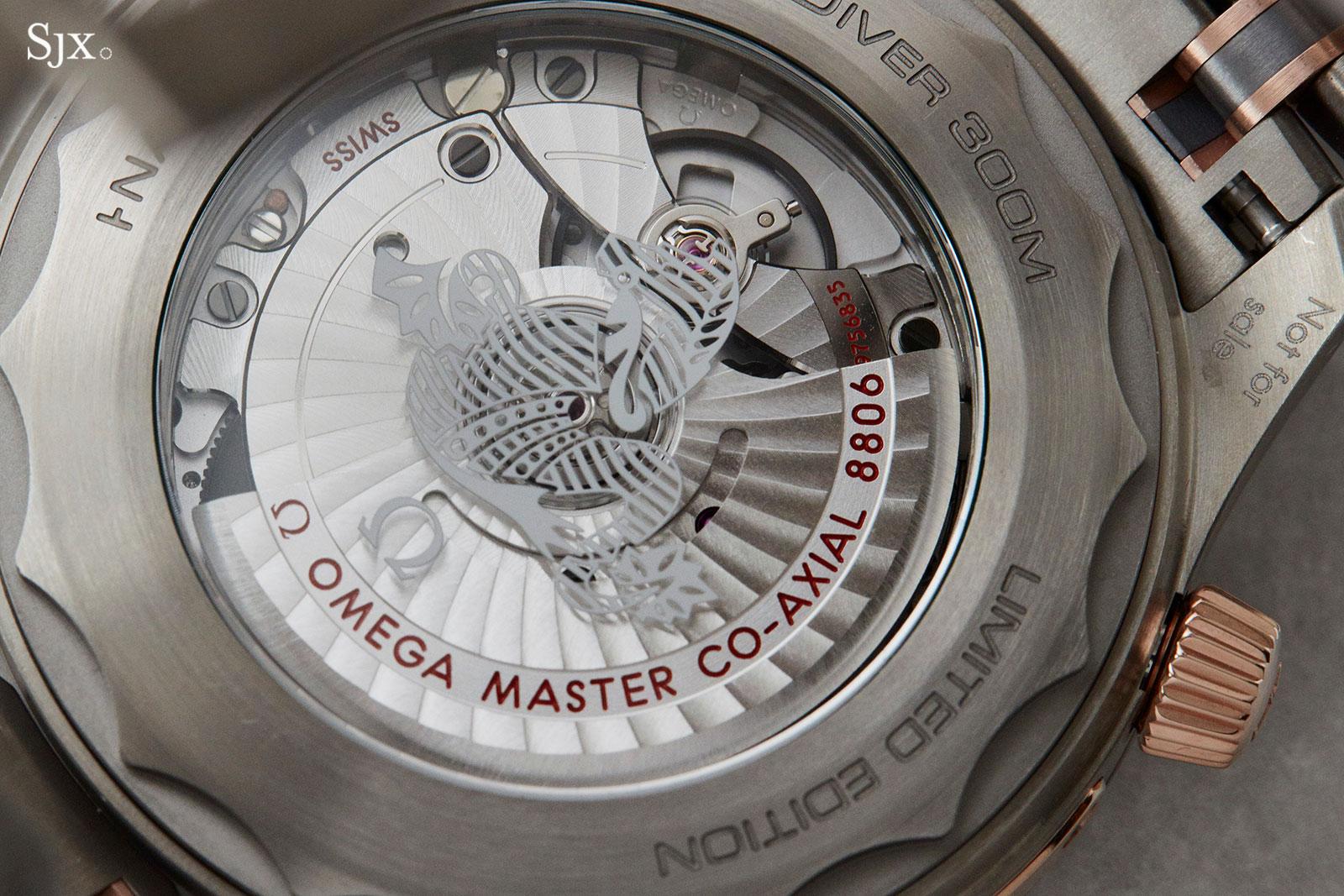 Omega Seamaster Diver 300m Titanium Tantalum 3