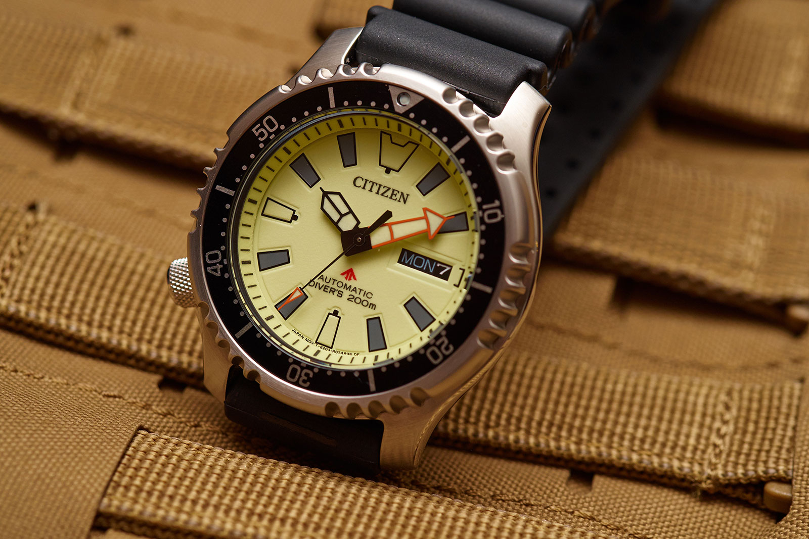 Citizen Promaster Asia edition diver watch