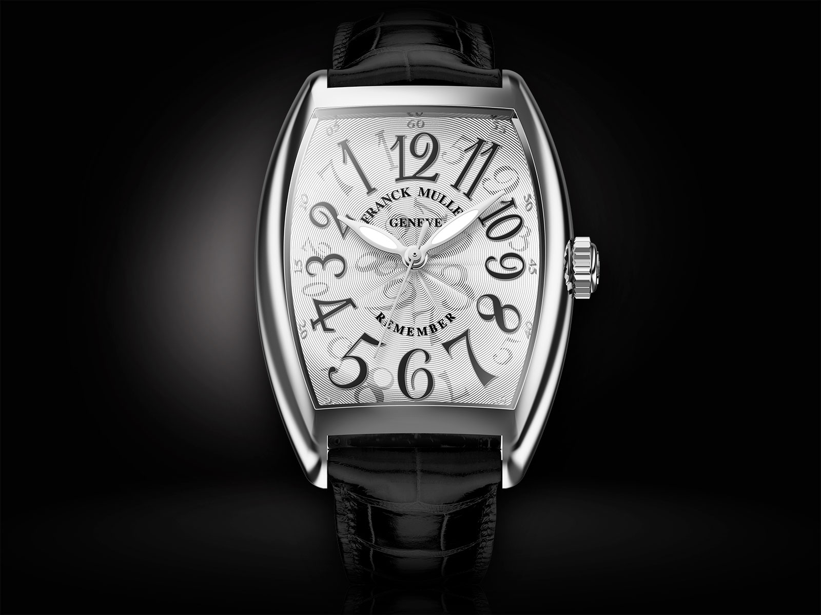 Franck Muller Remember steel 2