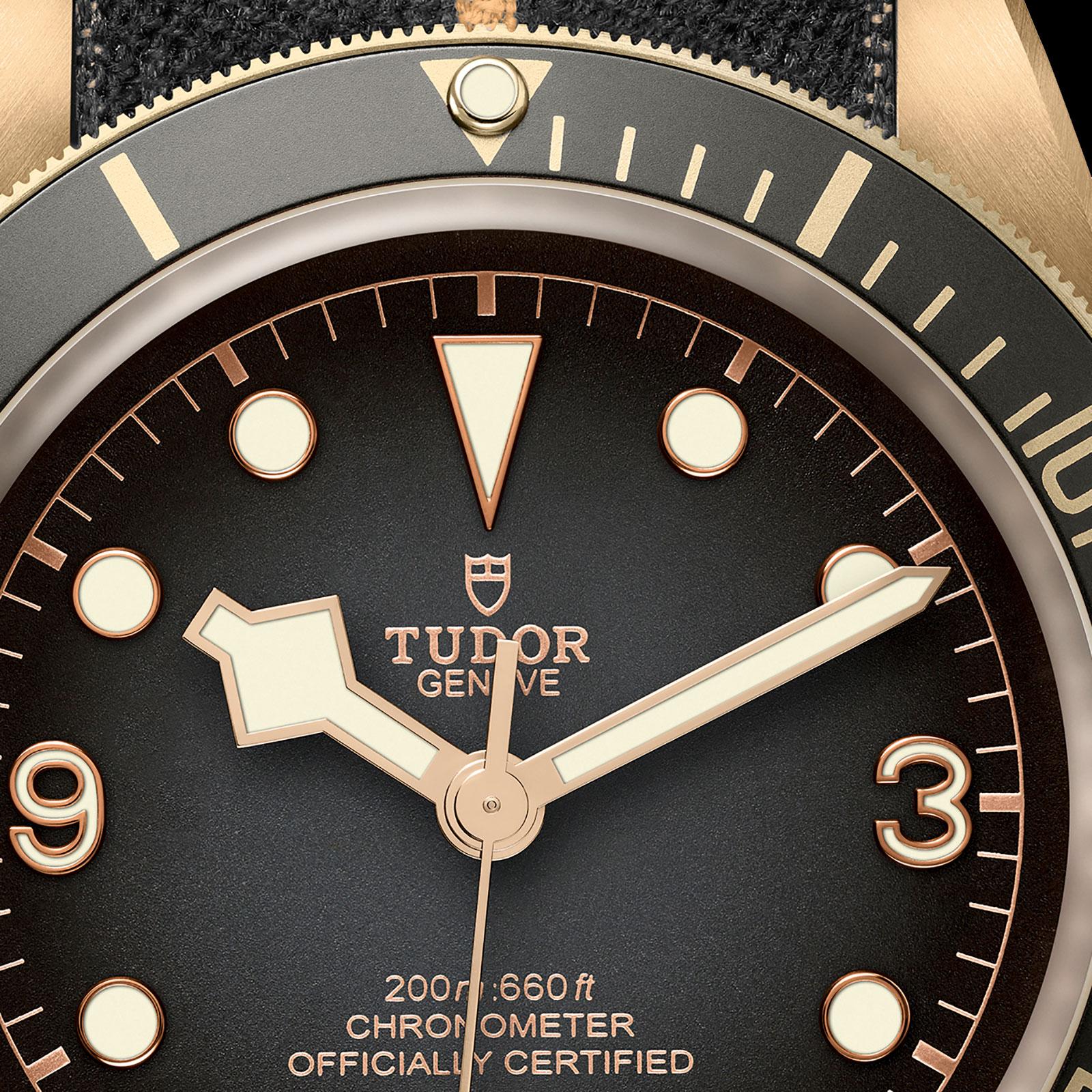 Tudor Black Bay bronze slate grey 3