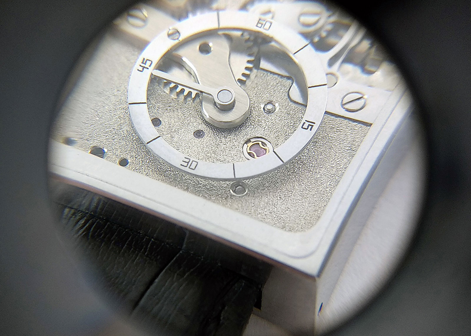 david lowinger series 2 regulator watch 5