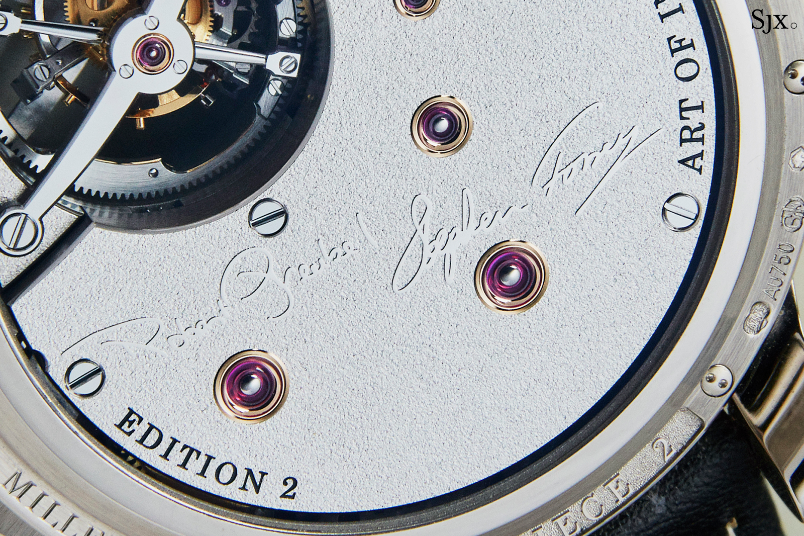 Greubel Forsey Differential Double Tourbillon back