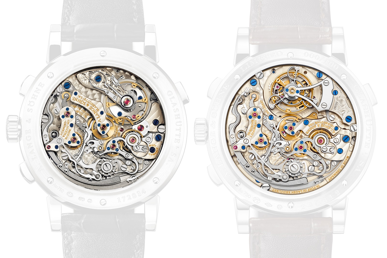 A. Lange & Söhne Datograph Perpetual Tourbillon Pink Gold case back comparison