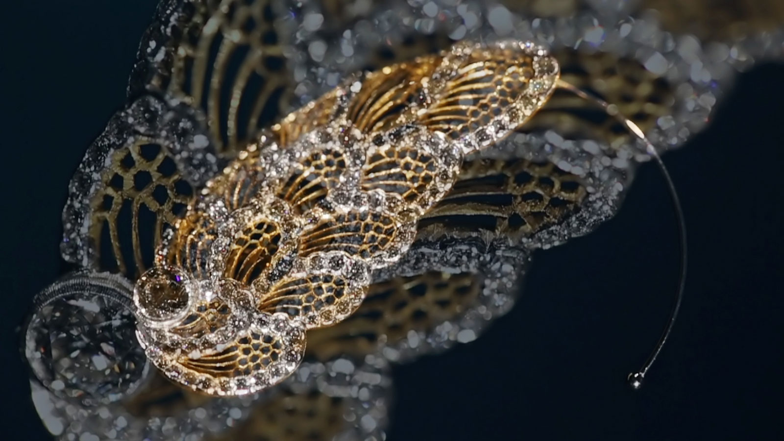 buccellati-arts-collection brooch